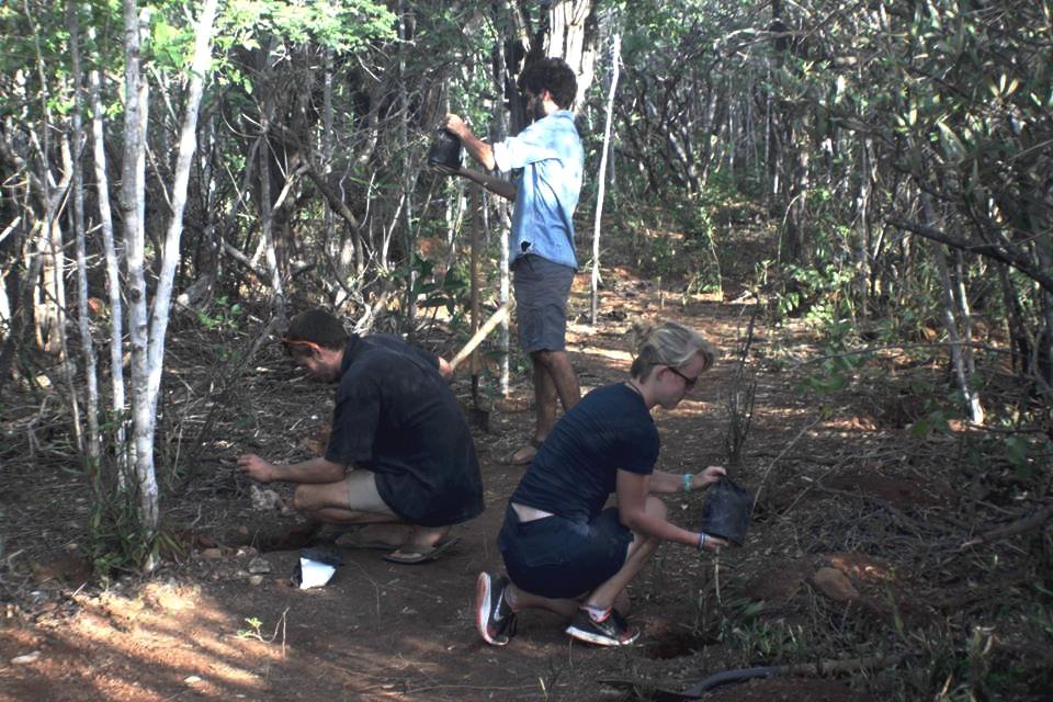 Nieuwe kans om Bonaire groener te maken