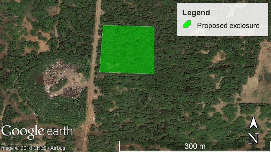 Echo begint herbebossingsgebied bij Morotin