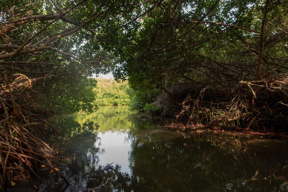 Betere doorstroming van het water in Lac