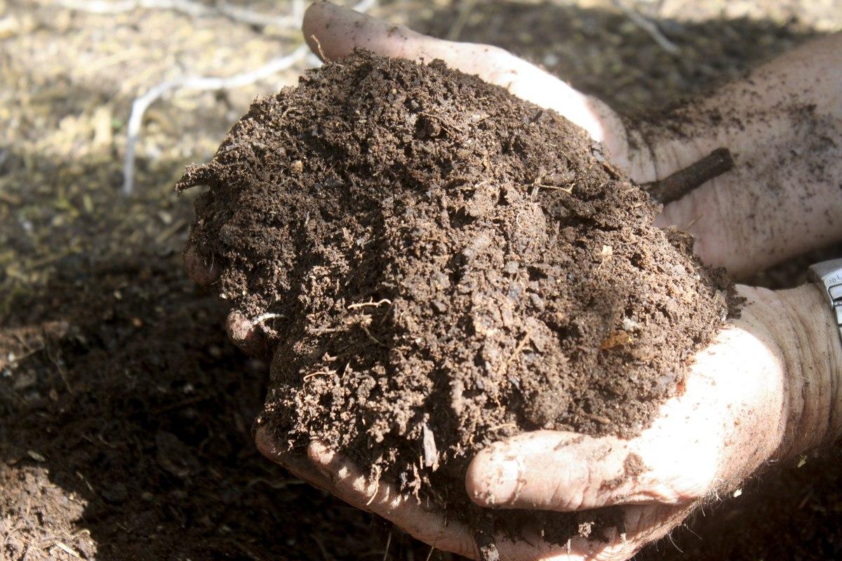 Handleiding compost maken op Bonaire