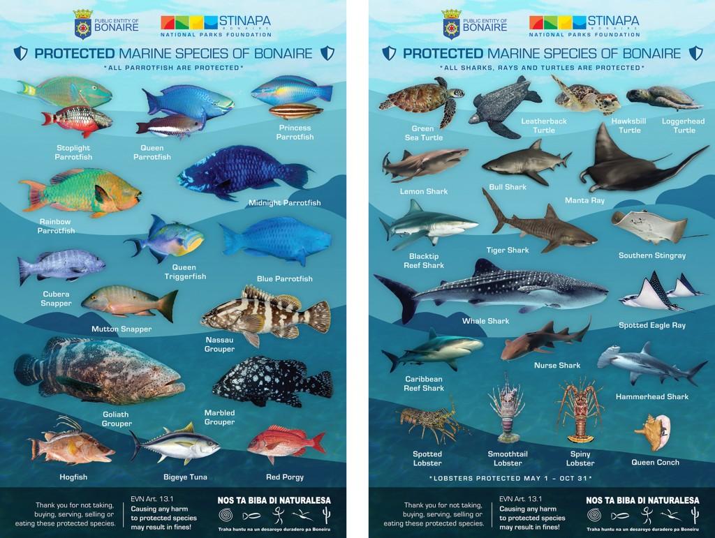 Belang Werelderfgoed status voor Bonaire